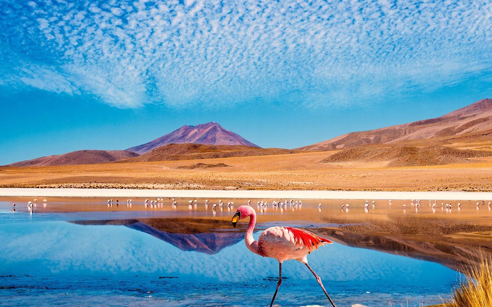 É possível conhecer Santiago e o Deserto do Atacama em uma só viagem?