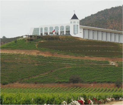 VINÍCOLAS DO VALLE DE CASABLANCA